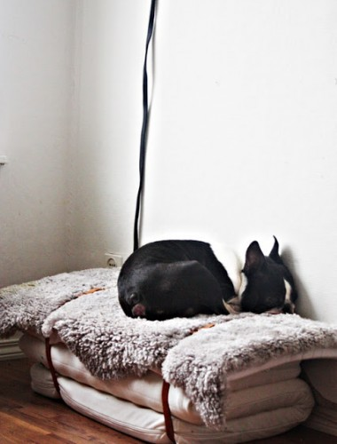 city-pattes-DIY-couchage-chiens