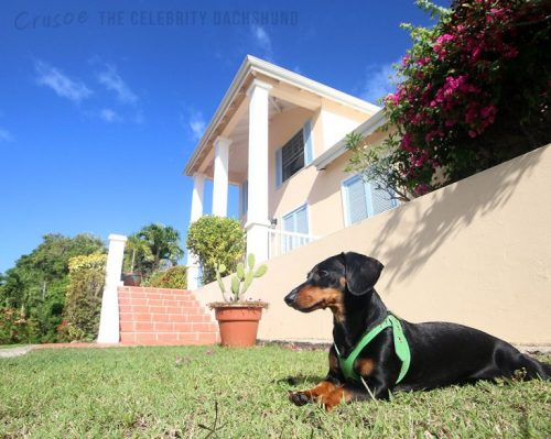 crusoe-at-the-great-house-st-lucia-768x613