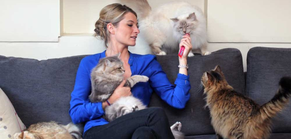 Les chats de sandrine arcizet animatrice sur c8 city pattes for Sandrine arcizet facebook