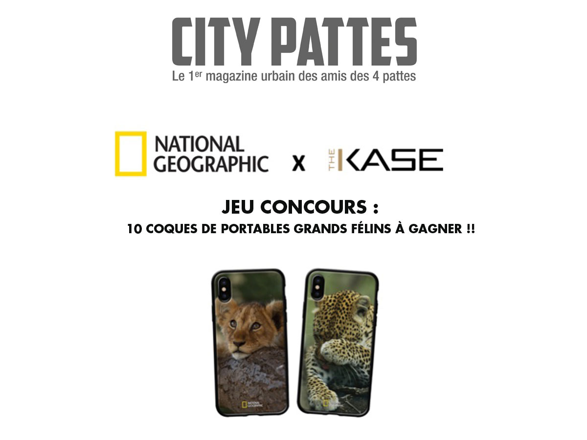 Jeu-concours-City-Pattes-NatioGeoWild-TheKase