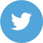 twitter-city-pattes