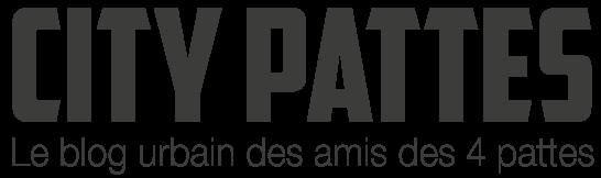 logo-city-pattes-blog