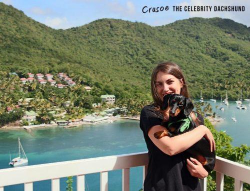 crusoe-and-mum-768x588