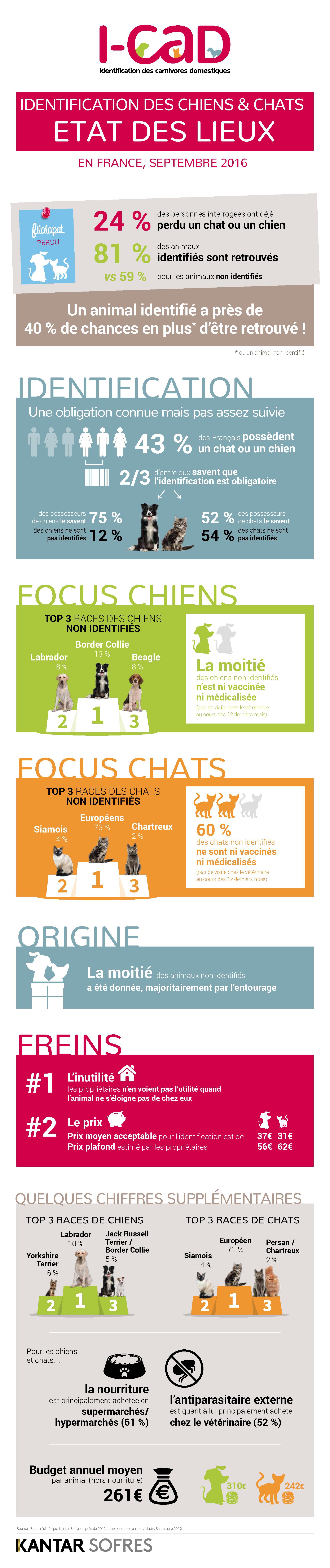 infographie-i-cad-2016-city-pattes