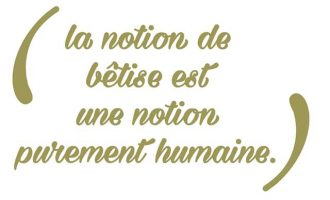 notion-betise-chien