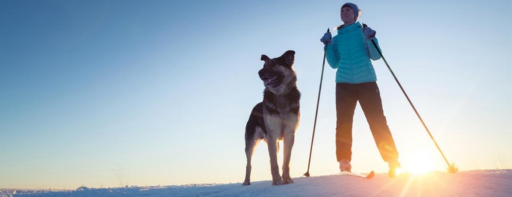 sports-hiver-avec-chien-city-pattes