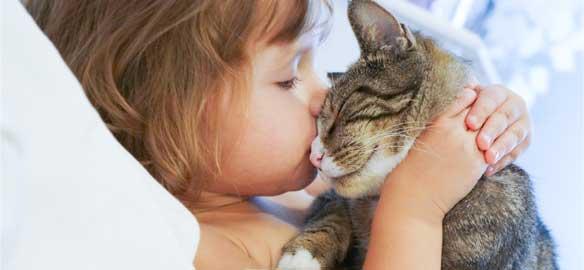 Quel cat-lover êtes vous ?