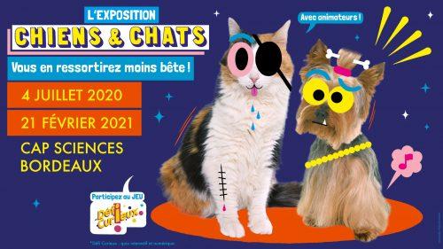 expo-chien-chat-cap-sciences-city-pattes